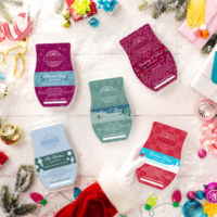 SCENTSY BRICKS INCANDESCENT 2018 SCENTSY HOLIDAY | SCENTSY DECEMBER 2018 WARMER & SCENT OF THE MONTH - SOLITUDE SCENTSY WARMER & CHRISTMAS CUDDLES | Scentsy® Online Store | Scentsy Warmers & Scents | Incandescent.Scentsy.us