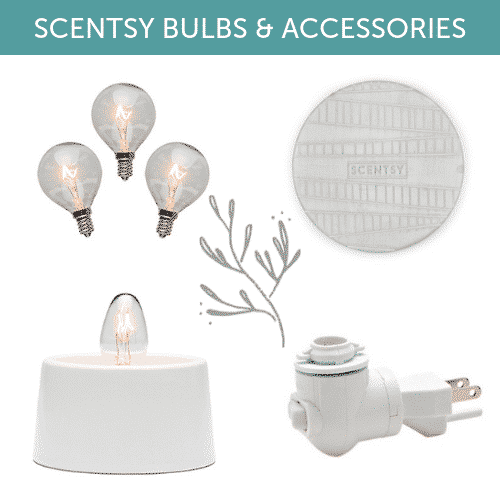 SCENTSY BULBS & ACCESSORIES 2019 CATEGORY (1)