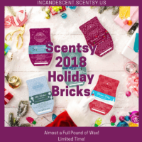 NEW! SCENTSY HOLIDAY / CHRISTMAS 2018 BRICKS
