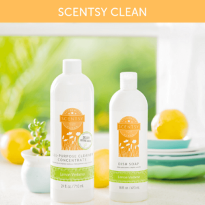 BLUE GROTTO SCENTSY COUNTER CLEAN