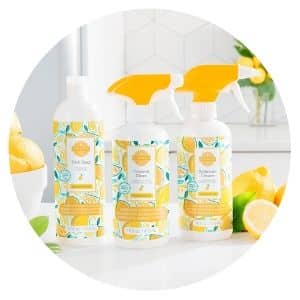SCENTSY CLEAN SQUEEZE THE DAY