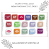 SCENTSY FALL 2018 NEW RELEASE FRAGRANCES | Lavender Cotton Scentsy Bar
