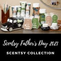 SCENTSY FATHER'S DAY 2021 COLLECTION | Shop Scentsy Laundry Products
