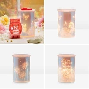 SCENTSY FEBRUARY 2021 WARMER OF THE MONTH SHOP NOW