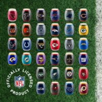 SCENTSY NFL FOOTBALL WARMERS