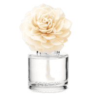SCENTSY FRAGRANCE FLOWER DARLING DAHLIA
