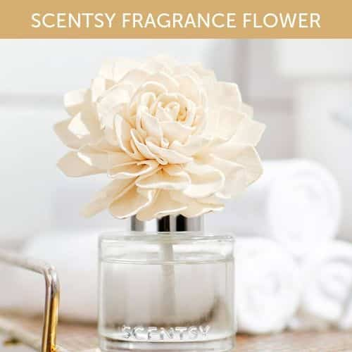 NEW SCENTSY FLOWER FRAGRANCE