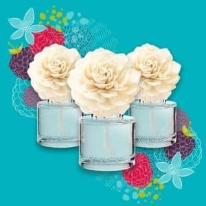 SCENTSY FRAGRANCE FLOWERS 300X300