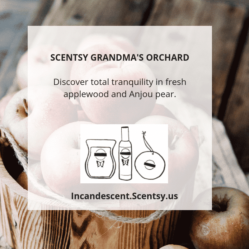 SCENTSY GRANDMA'S ORCHARD   SCENTSY 2019 ScenTrend - Woods Fragrances