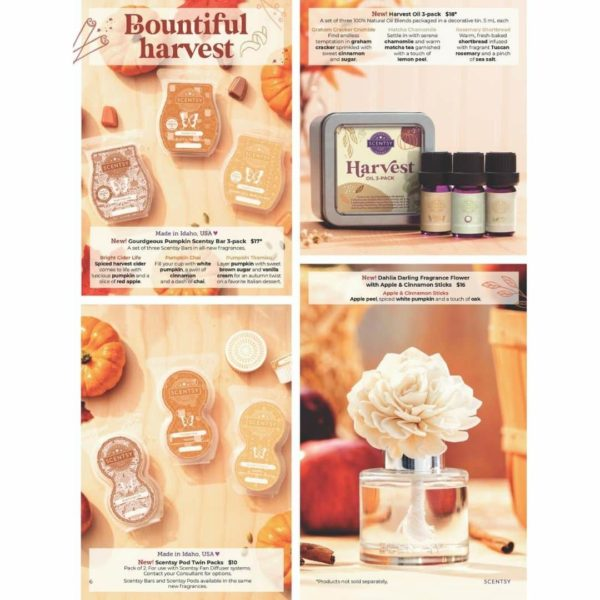 SCENTSY HARVEST PAGE 4 | Pumpkin Chai Scentsy Pods