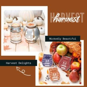 SCENTSY HARVEST SHOP NOW