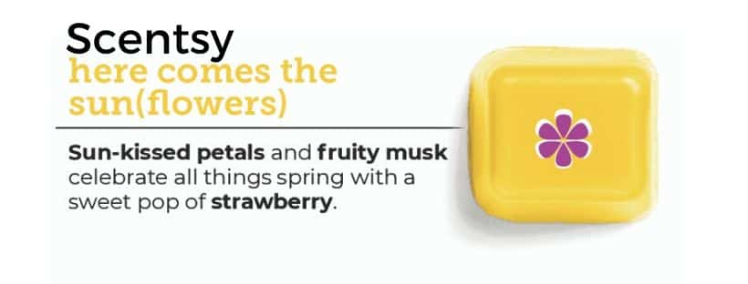 SCENTSY HERE COMES THE SUN (FLOWERS)