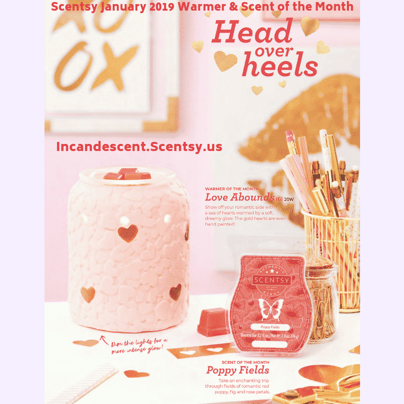 SCENTSY JANUARY 2019 SCENTSY WARMER & SCENT OF THE MONTH - LOVE ABOUNDS & POPPY FIELDS