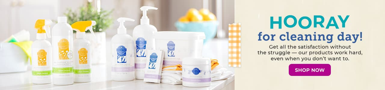 SCENTSY LAUNDRY & CLEAN