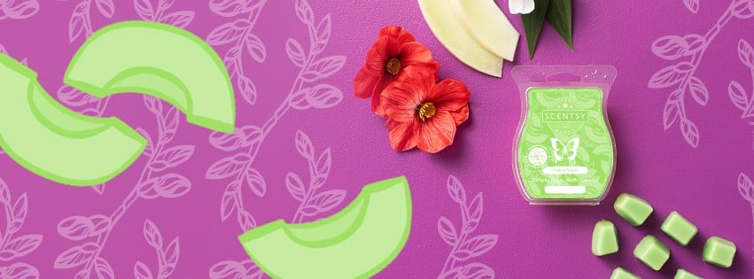 SCENTSY MAD FOR MELON BANNER