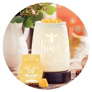 SCENTSY MAY 2020 WARMER OF THE MONTH