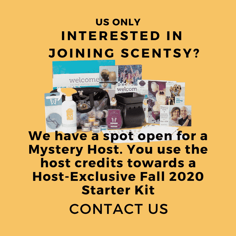 SCENTSY MYSTERY HOST FALL 2020 HOST KIT 2