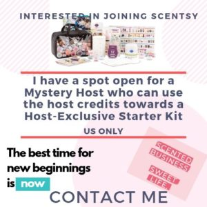 SCENTSY MYSTERY HOST KIT