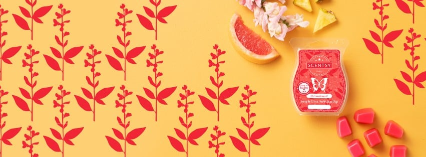 SCENTSY OH SNAP DRAGON BANNER