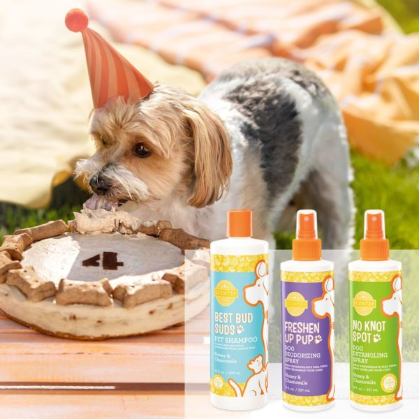 SCENTSY PET PRODUCTS SPRING 2021 | SWEET PEA & SHEA SCENTSY PET SPRAY