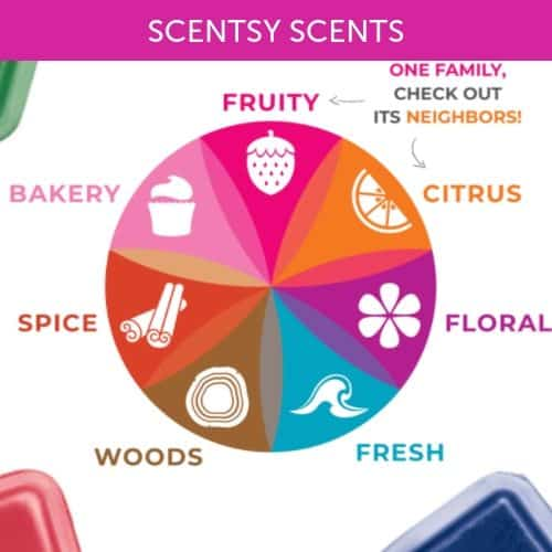 SCENTSY SCENTS FALL 2019 CATEGORY