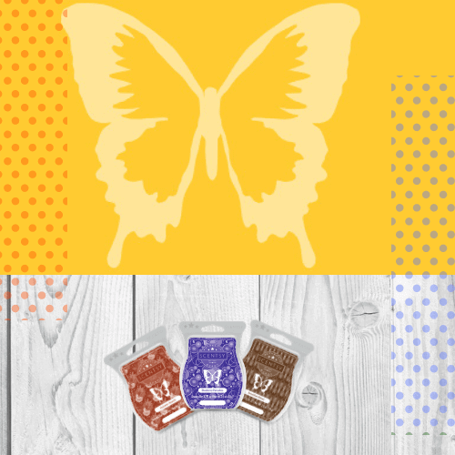 SCENTSY 2019 FRAGRANCES