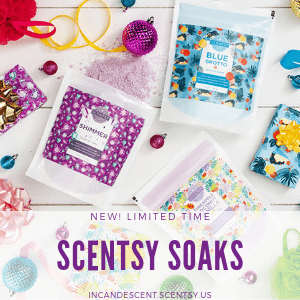 SCENTSY SOAKS HOLIDAY 2018