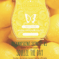 SQUEEZE THE DAY SCENTSY ROOM SPRAY