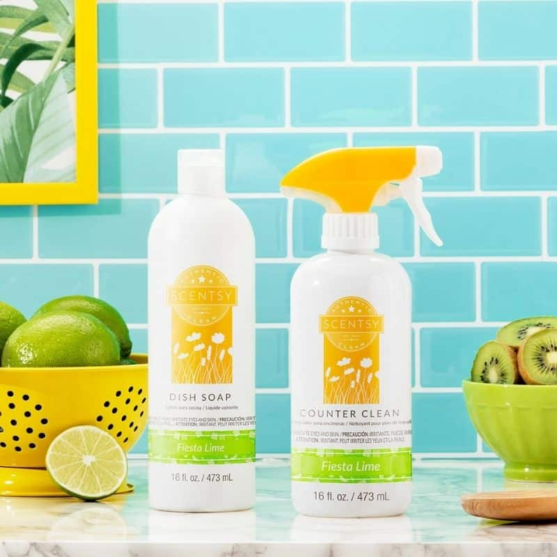 SCENTSY SUMMER 2021 CLEAN COLLECTION