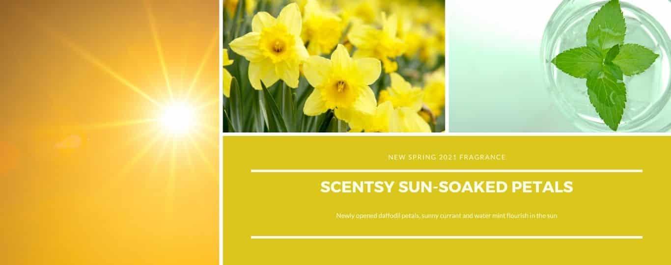 SCENTSY SUN SOAKED PETALS FRAGRANCE