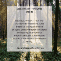 SCENTSY ScenTrend 2019 Woods   SCENTSY FEBRUARY 2019 WARMER & SCENT OF THE MONTH - LOVE ABOUNDS SCENTSY WARMER & POPPY FIELDS FRAGRANCE