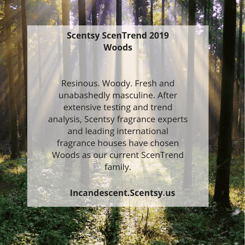 SCENTSY 2019 ScenTrend – Woods Fragrances | Scentsy® Buy