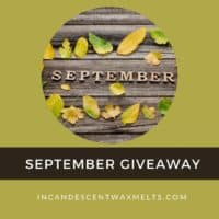 SEPTEMBER 2021 GIVEAWAY 1000X1000 | Scentsy August 2021 Warmer & Scent of the Month - Night Sky Scentsy Warmer & Vanilla Blackberry