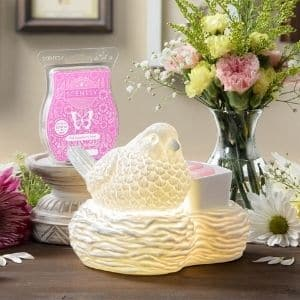 SHOP MARCH 2021 WARMER SCENT OF THE MONTH 1