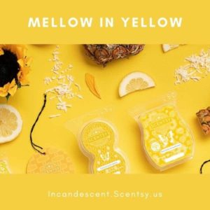 SHOP YELLOW SCENTSY PRODUCTS 1