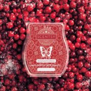SNOWKISSED CRANBERRY SCENTSY BAR