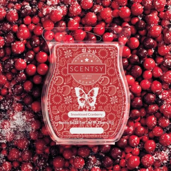 SNOWKISSED CRANBERRY SCENTSY BAR | Christmas Camper RV Scentsy Warmer