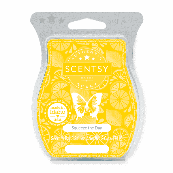 SQUEEZE THE DAY SCENTSY BAR