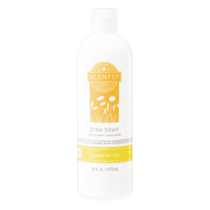SQUEEZE THE DAY SCENTSY DISH SOAP