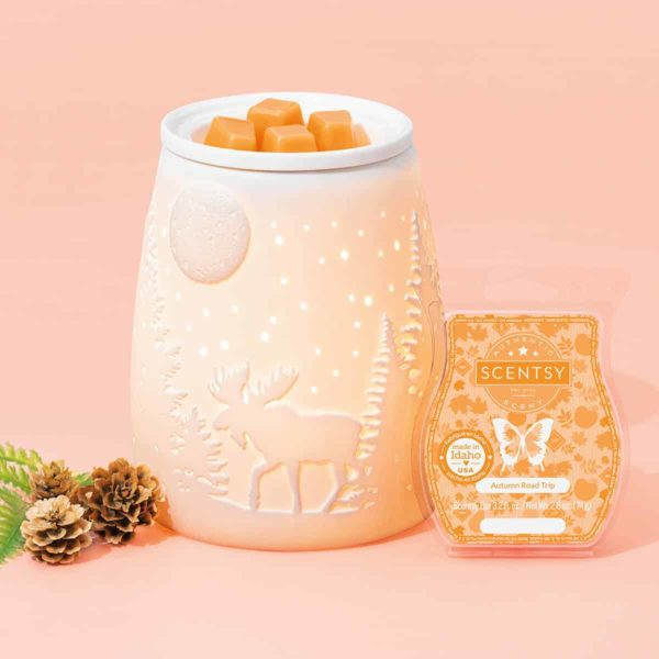 STARRY FRONTIER SCENTSY WARMER 1