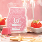 STRAWBERRY CHAMPAGNE TRUFFLE SCENTSY FRAGRANCE