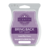 SWEET PLUM PASTRY BRING BACK MY SCENTSY BAR JULY 2018