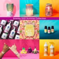 Scentsy 2021 Summer Collection | NEW! Scentsy Scented Bracelets | Scentsy Fragrance Jewelry