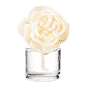 Scentsy Buttercup Belle Fragrance Flower 2