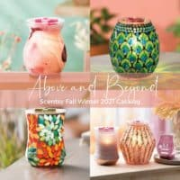 Scentsy Fall 2021 Catalog 2 | New! Scentsy Fall 2021 Clean & Hand Soap Bundles | Cider Mill & Autumn Road Trip