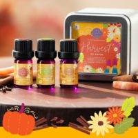Scentsy Harvest Oil Collection1   NEW! Harvest 2021 Scentsy Oil Collection   Incandescent.Scentsy.us