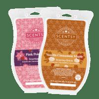 Scentsy Holiday 2021 Brick Bundle