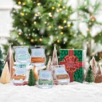 Scentsy Scents of the Season Bars 2021 1 | Scentsy 24 hour Winnie the Pooh Sale! The Disney Hundred Acre Wood is turning 95!