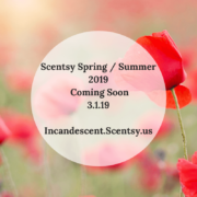 SCENTSY SPRING SUMMER 2019 CATALOG SCENTSY WARMERS, SCENTS & PRODUCTS