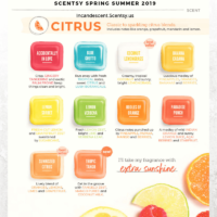Scentsy Spring Summer 2019 Citrus scents | SCENTSY COMPLETE SCENT LIST FOR SPRING SUMMER 2019 | SCENTSY LIST OF FRAGRANCES | Scentsy® Online Store | Scentsy Warmers & Scents | Incandescent.Scentsy.us
